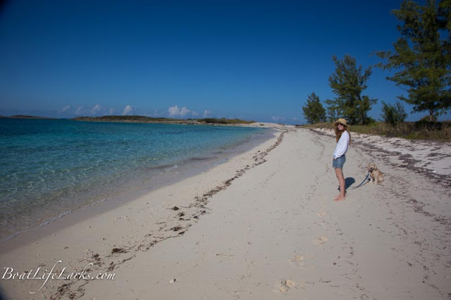 Soldier Cay beach, Berry Islands