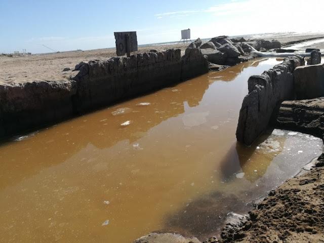 Escándalo en el Puerto Mar del Plata por más de 40 mil litros de desechos tóxicos + INFO