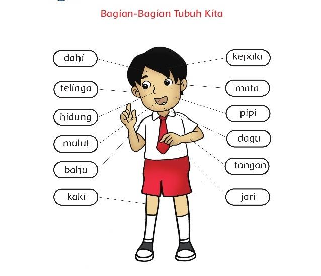 Musdalifa Pgsd Bahan Ajar K13 Kelas 1 Tema 1 Diriku