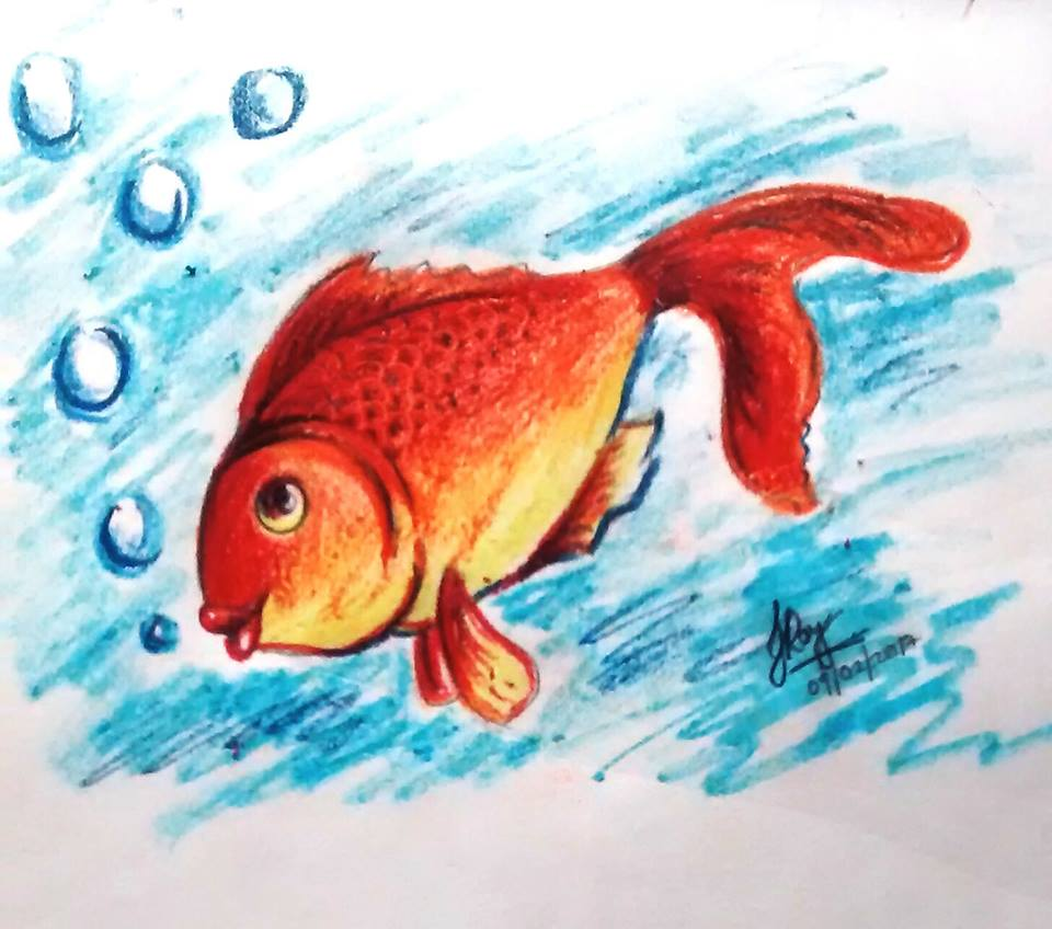 Fish by pastel color