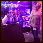 Britmums 2013, Harry Poter, Warner Bros, Hedwig http://www.madmumof7.com
