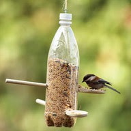 plastic bottles in design of bird feeder