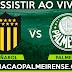 Assistir Palmeiras x Peñarol Online 26/04/2017 HD