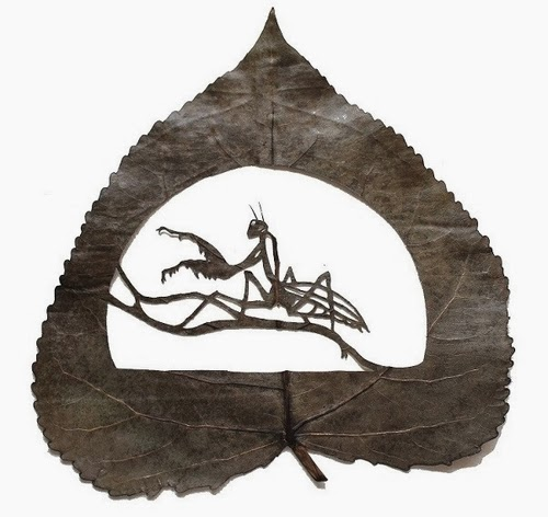 06-Animals-Cut-Leafs-Lorenzo-Manuel-Durán-Art-and-Nature-www-designstack-co