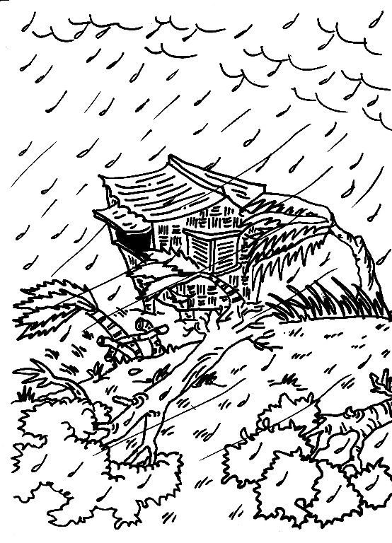 free coloring pages storm hawks - photo#37
