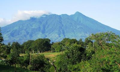 http://www.wisatakalimantan.com/2016/07/pesona-taman-nasional-gunung-palung.html