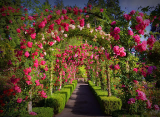 Jardins Butchart no Canadá