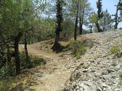 करेरी गांव से झील तक