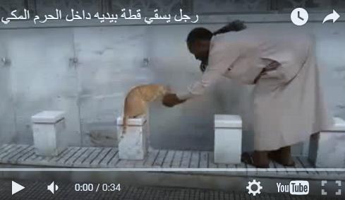 Di Masjidil Haram, Pria Misterius Ini Tampung Air Dengan Tangannya Agar Diminum Kucing (Video)