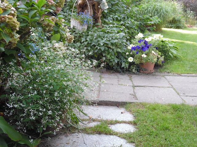 nawierzchnia w ogrodzie