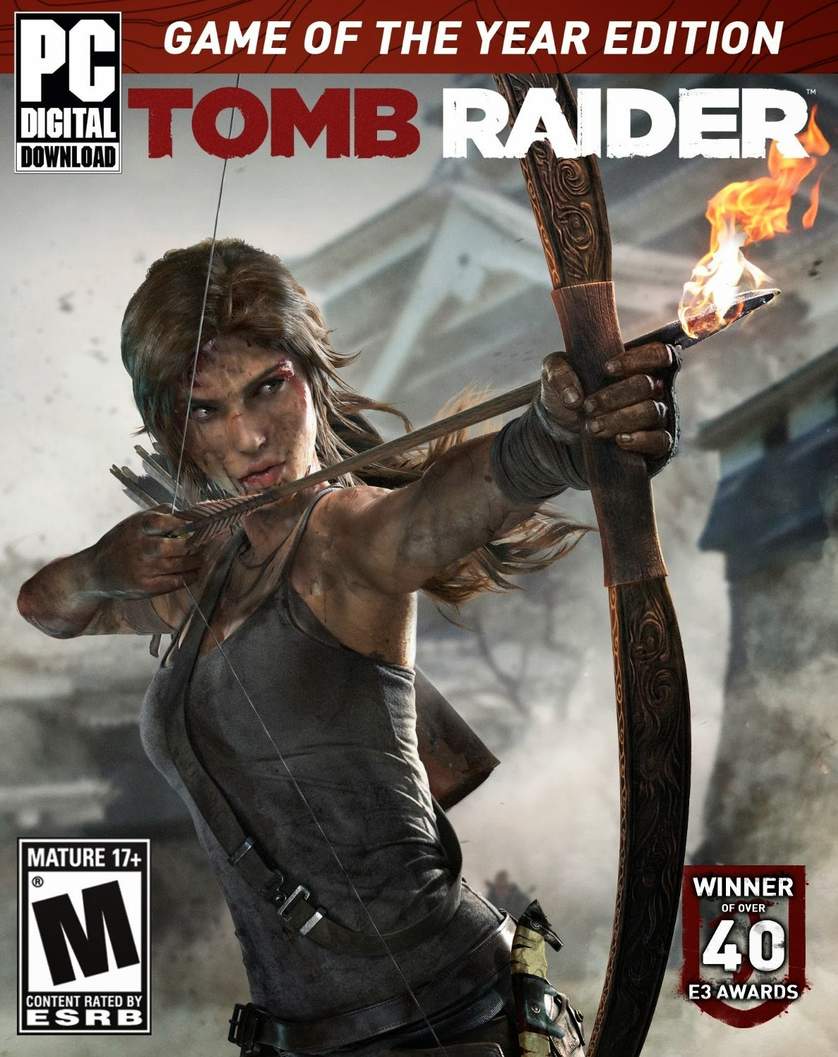Tomb Raider Game Of The Year Edition ESPAÑOL PC