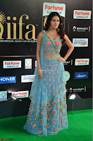 Amyra Dastur in Flower Print Choli Transparent Chunni at IIFA Utsavam Awards 25.JPG