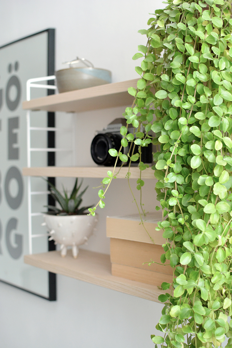 living room string shelves