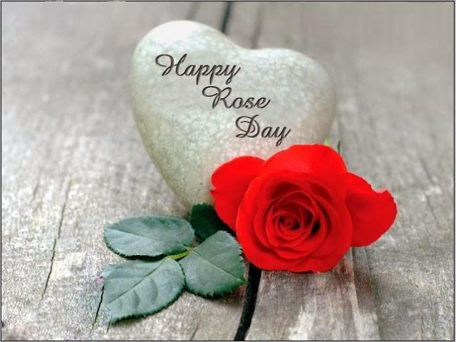 Happy Rose Day HD Photo
