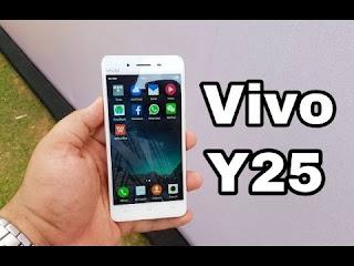 Vivo Y25 4G
