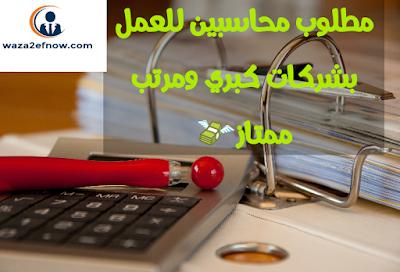 وظائف خاليه للمحاسبين في مصر | وظائف ناو