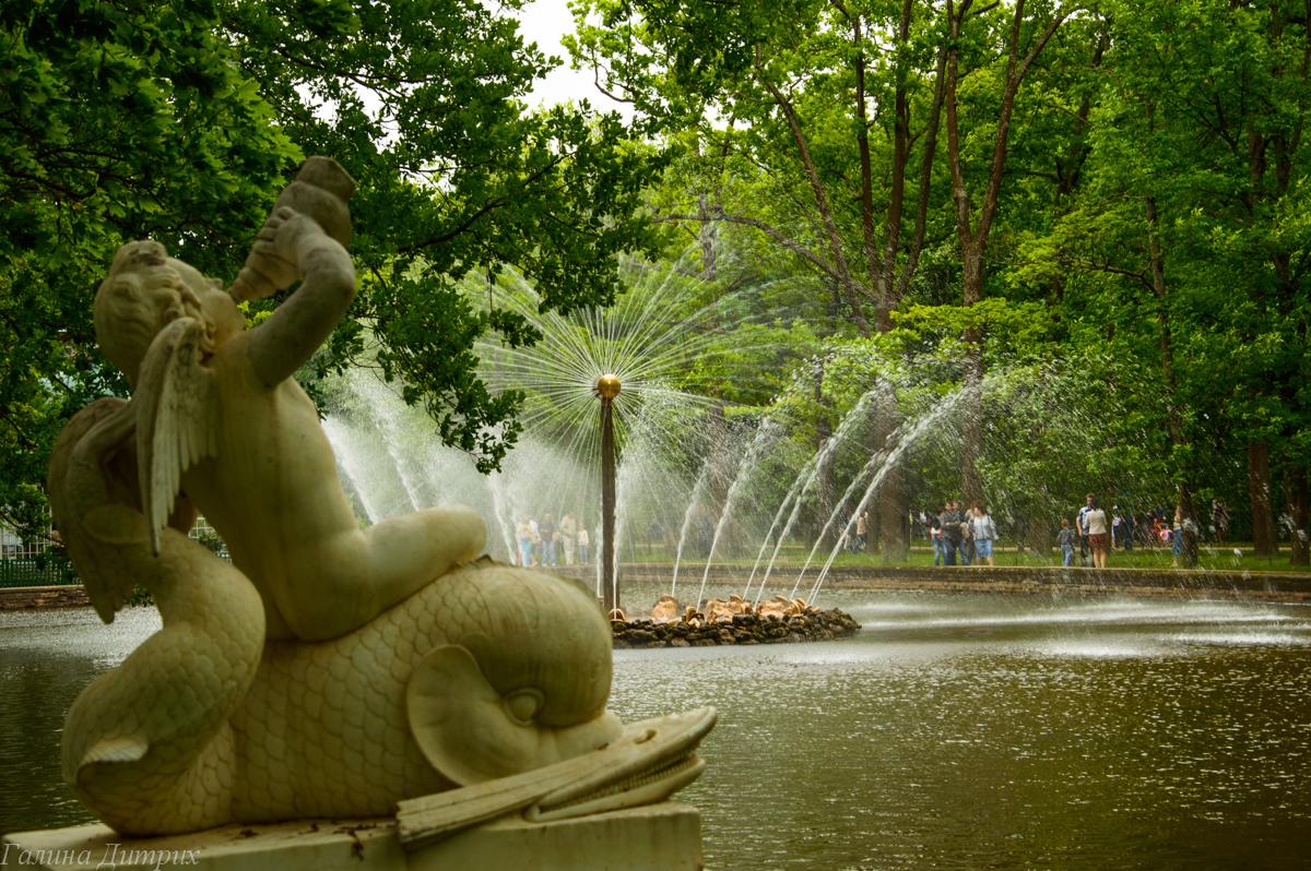 Фонтаны в Нижнем парке Петергофа фото