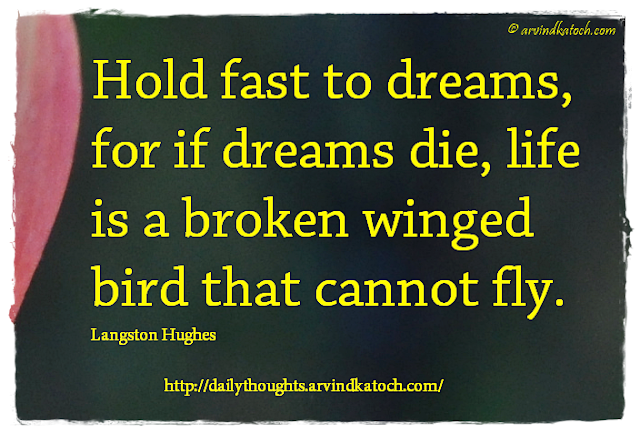 Motivational, Daily Thought Dreams, die, bird, fly