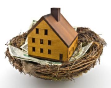 miniature house in a bird's nest