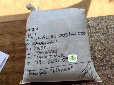 Benih Padi Pesanan   BAYAKI Jombang, Jatim.  Benih Sesudah di Packing