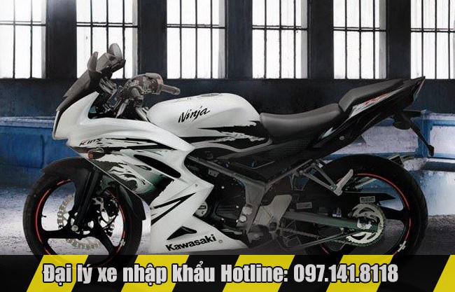 Kawasaki Ninja 150RR phiên bản đặc biệt 1