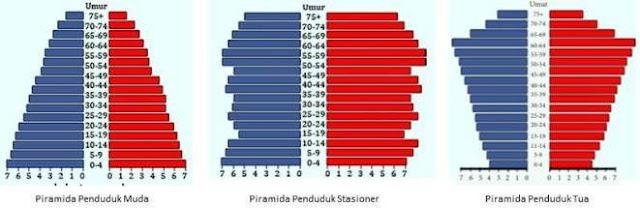 Pengertian Piramida Penduduk dan Macam-macam Jenis Piramida Penduduk beserta Contoh dan Ciri-cirinya