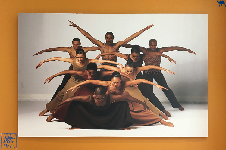 Le Chameau Bleu - Cours de danse au studio Alvin Ailey à New York USA