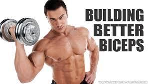 Building Better Biceps