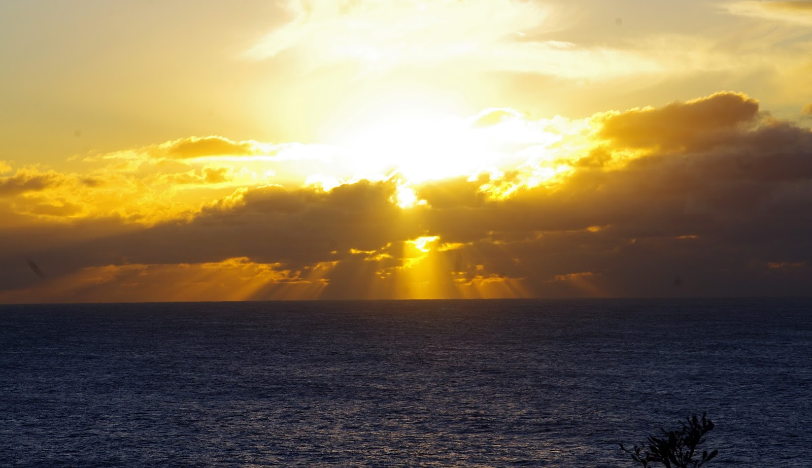the sunrise from Sydney harbour national park