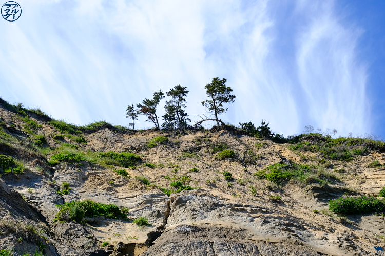 Le Chameau Bleu - Blog Voyage Block Island - Paysage de Block Isand- Rhode Island -USA