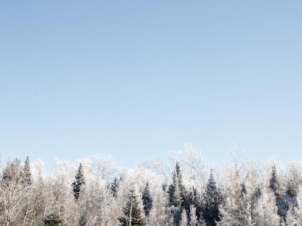 J'ai photographié l'hiver au Québec