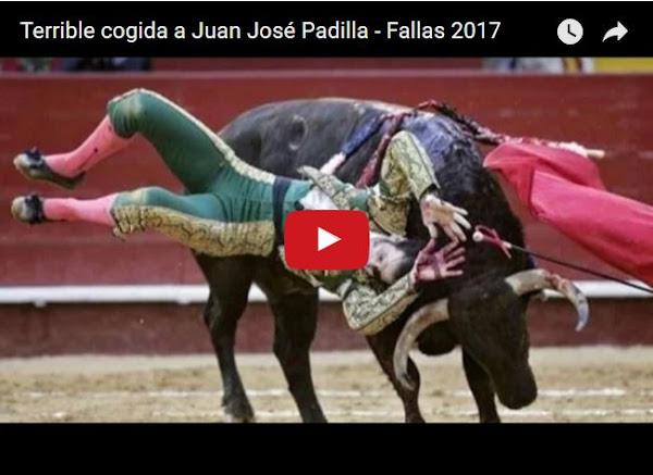Torero pierde un ojo y regresa para vengarse del toro