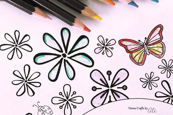 coloring page flowers and colored pencils