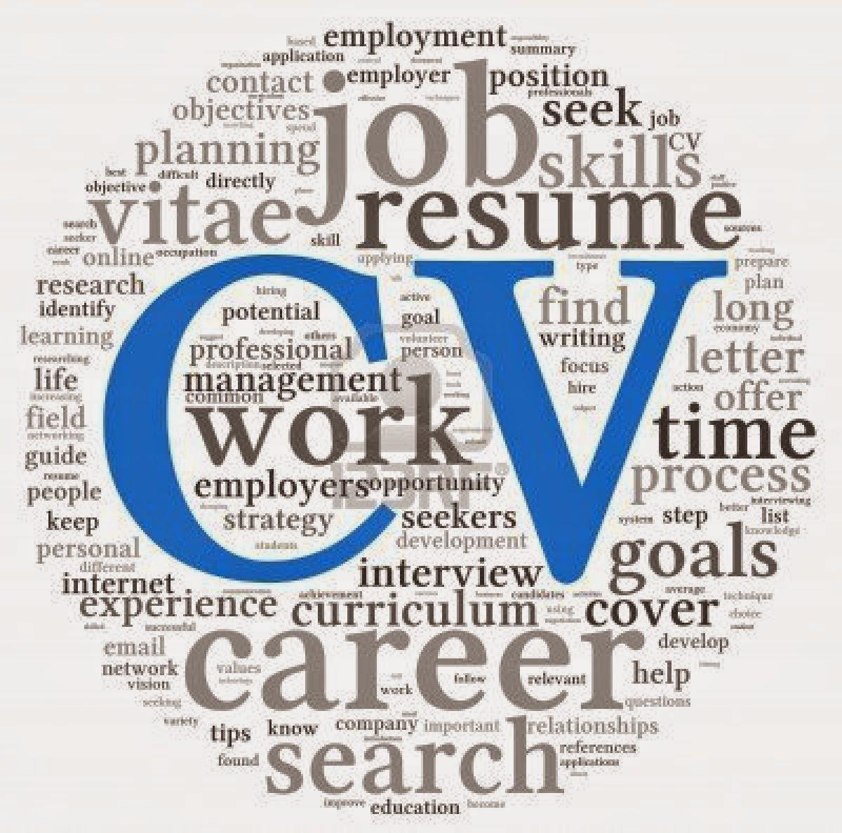 Modelo De Curriculum Vitae [CV] Hoja De Vida