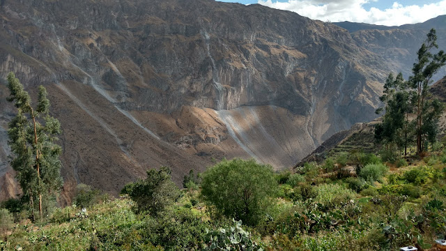 early morning Colca Canyon scenery