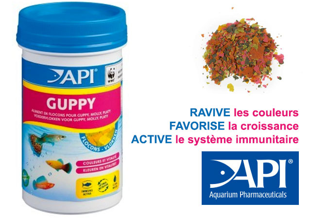 API - Guppy