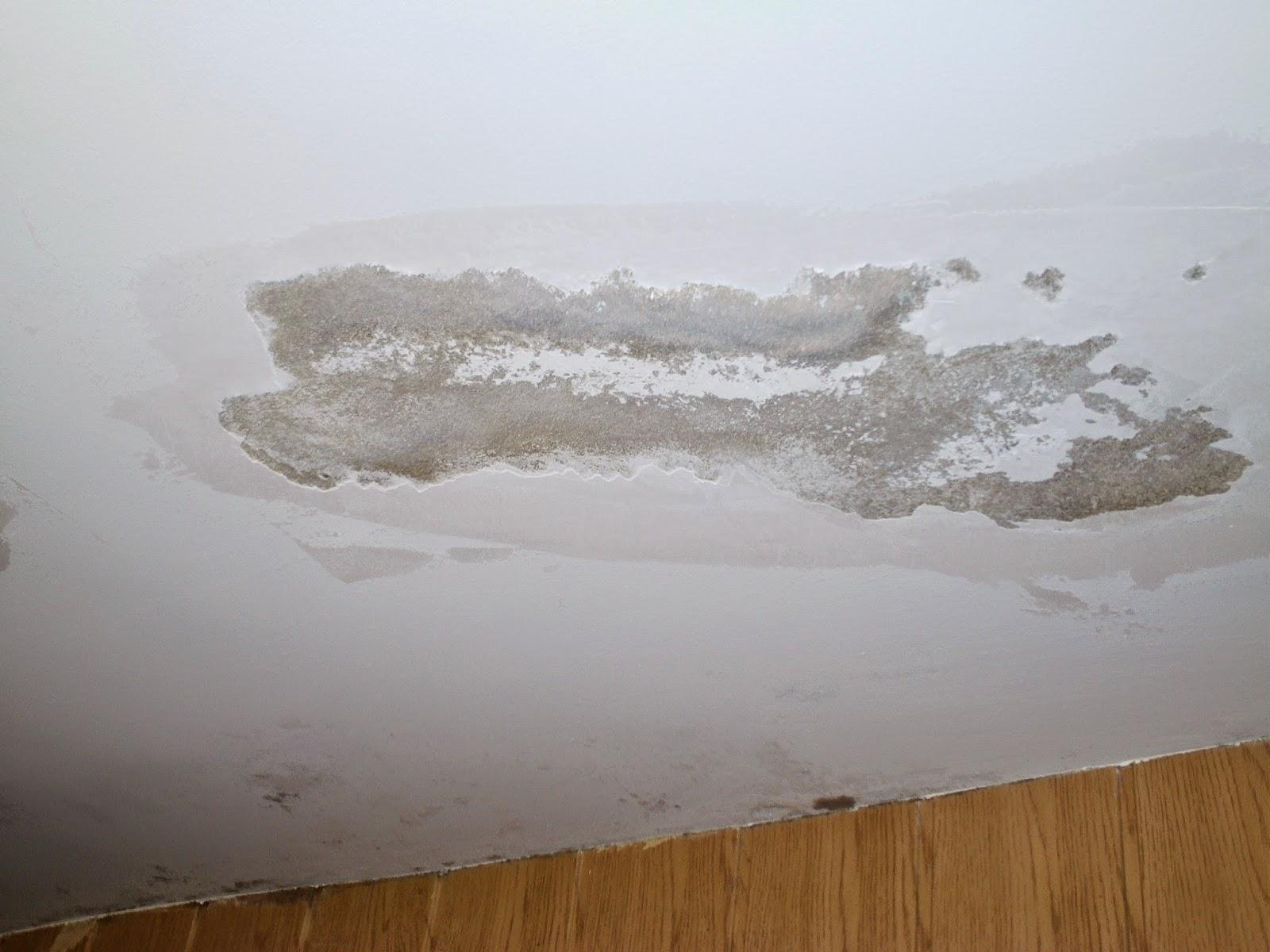 Reparación de humedades en Martorell