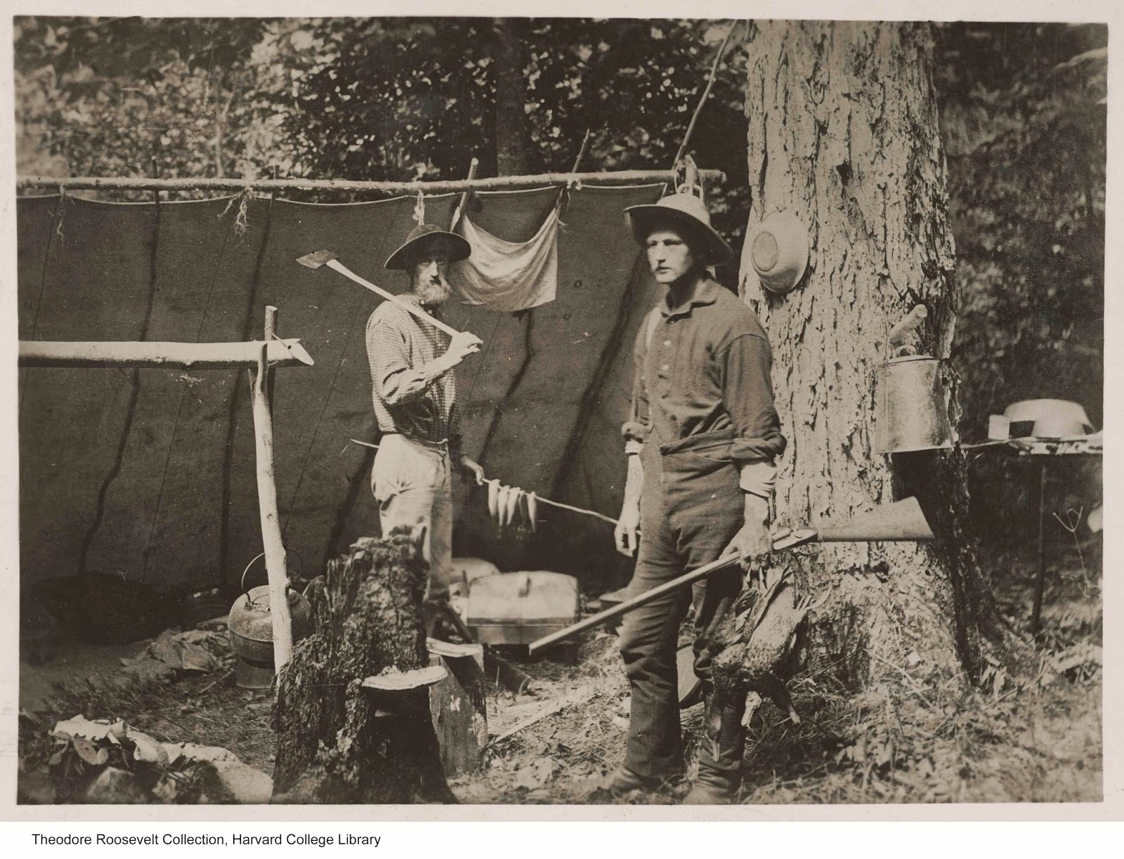 narcissus renovation project theodore roosevelt first  at camp on pratt cove mattawamkeag lake island falls maine the file list ca 1921 however wilmot died in 1891