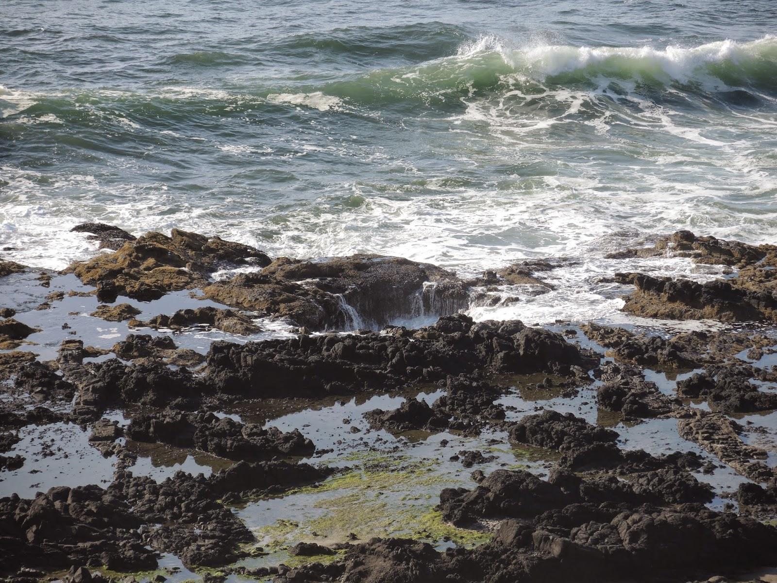 奧勒岡海岸線 12