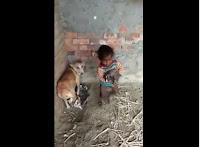 Thương cả em bé cả con cún :3
