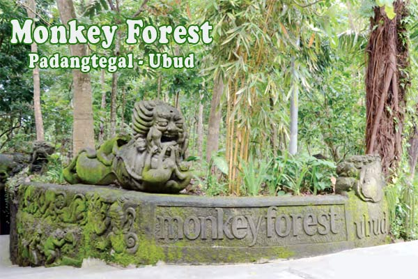 Monkey Forest Ubud Keberhasilan Desa Adat Bali