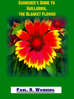 Gardener's Guide to Gaillardia, the Blanket Flower