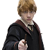 PNG Rony Weasley