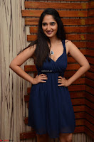 Radhika Mehrotra in a Deep neck Sleeveless Blue Dress at Mirchi Music Awards South 2017 ~  Exclusive Celebrities Galleries 095.jpg