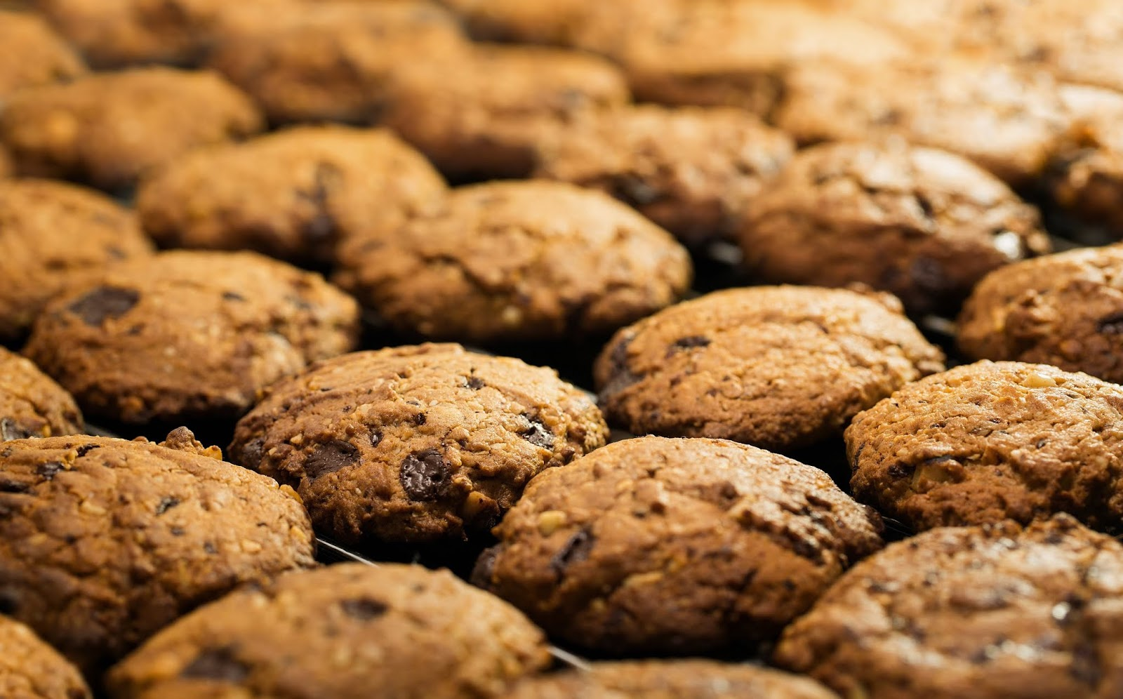 Student From California Baked grandfather's Ashes Into Cookies, Served It To Friends