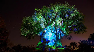 Tree of Life – Disney's Animal Kingdom Park.