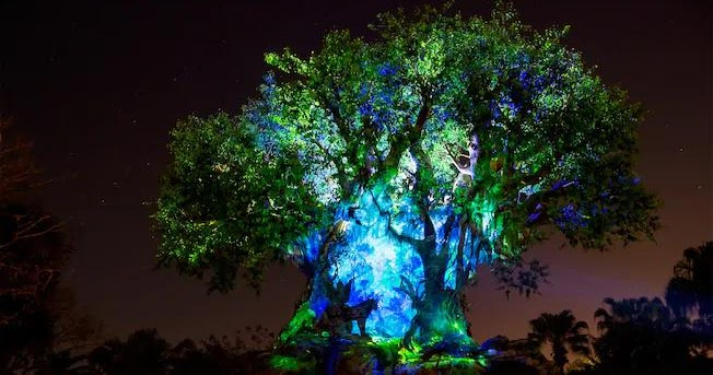 Tree of Life - Disney's Animal Kingdom Park.