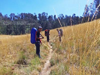 jalur pendakian gunung argopuro