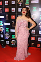 Bollywood Celebrities on the Red Carpet Of Zee Cine Awards 2017 Exclusive 062.JPG