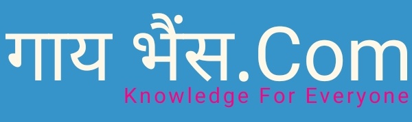GayBhains.com - Knowledge For Everyone